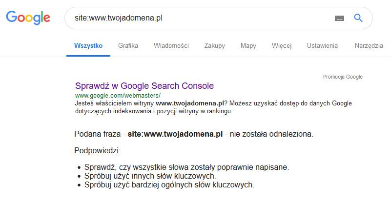 Dlaczego mojej strony nie ma w Google?