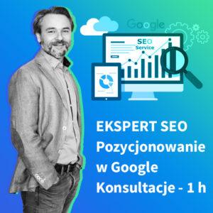 Ekspert SEO - Konsultacje online